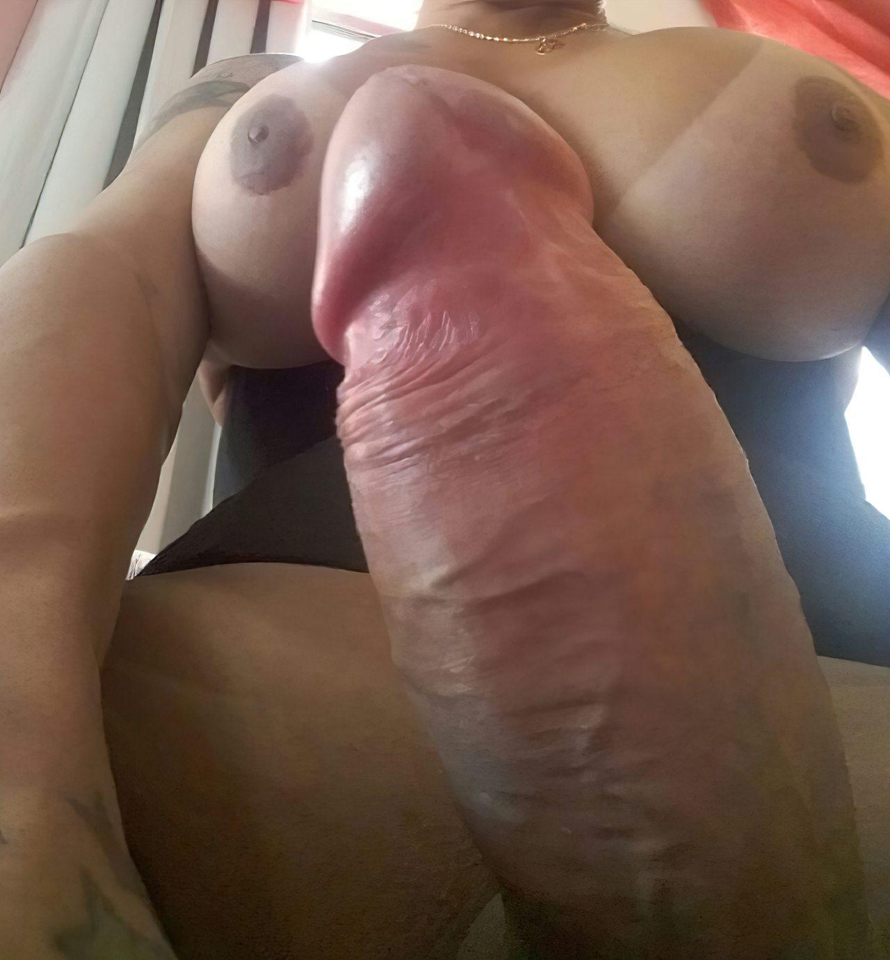 Travestis (45)