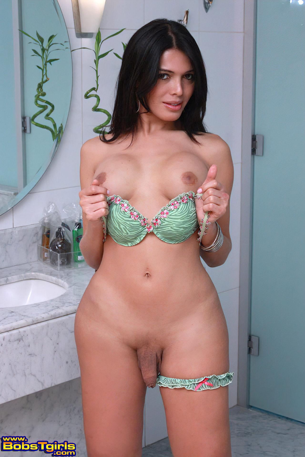 Milena Vendramini Travesti (6)
