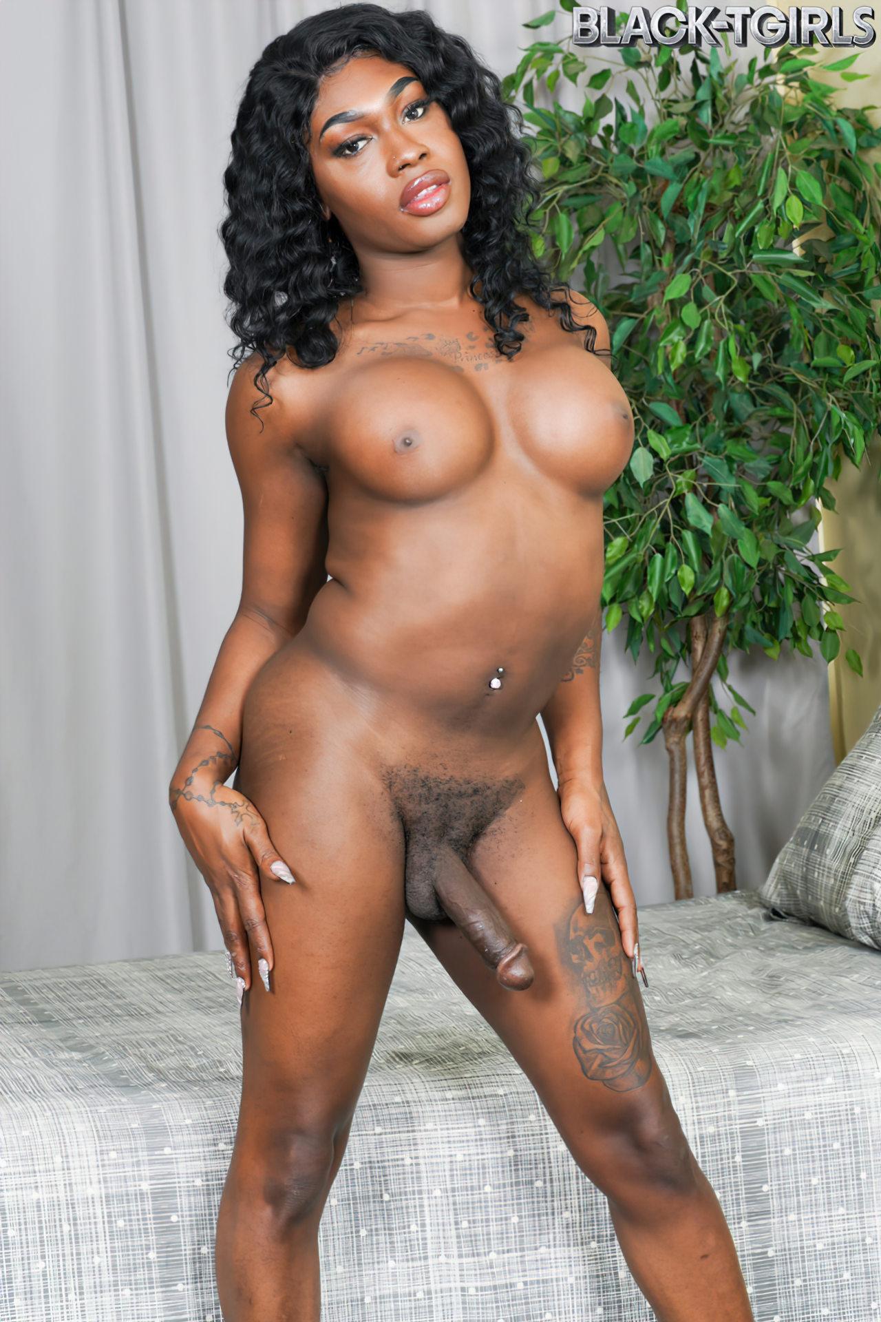 Trans Negra Gostosa (10)