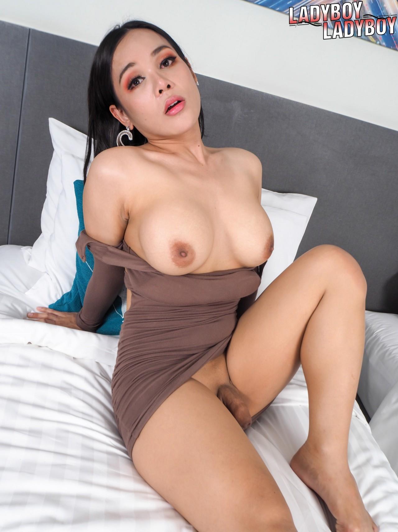 Travesti Morena Gatinha (1)