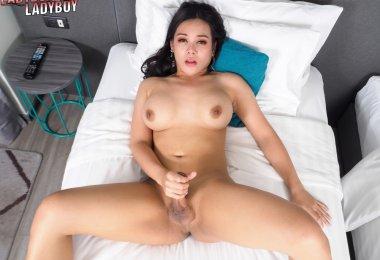 Travesti Morena Gatinha (7)