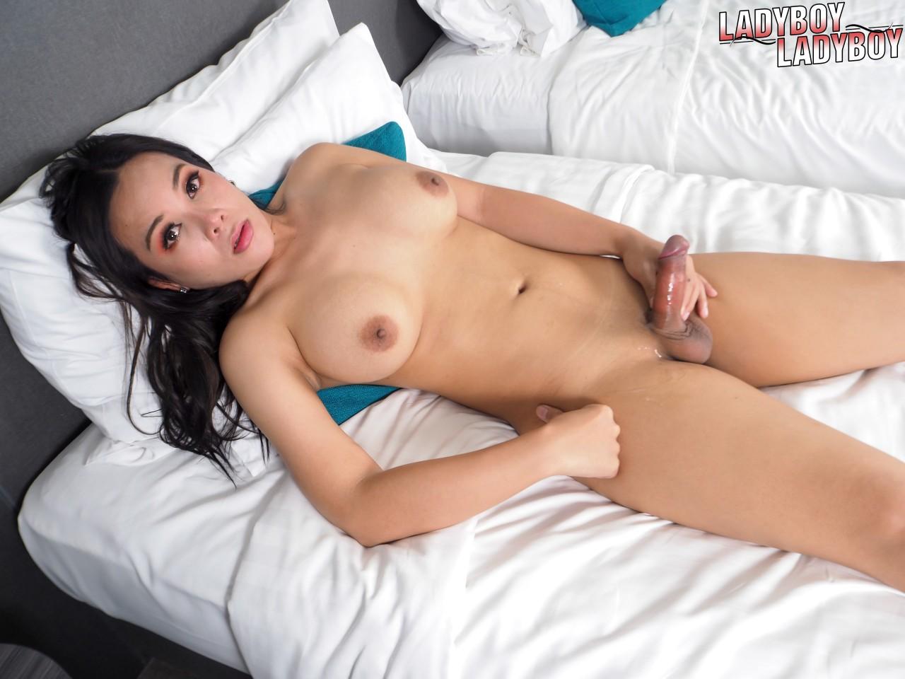 Travesti Morena Gatinha (11)